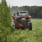georgia hemp farming